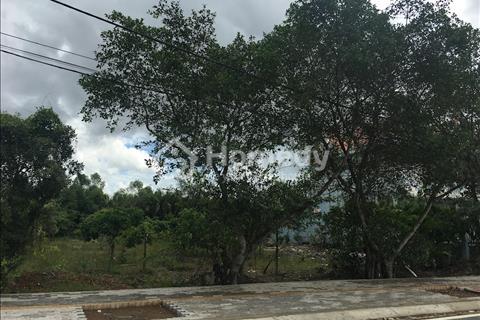 Bán đất đường T12, Tân Quý Tây, 2400m2, 2 mặt tiền đường, giá 1,8 triệu/m2