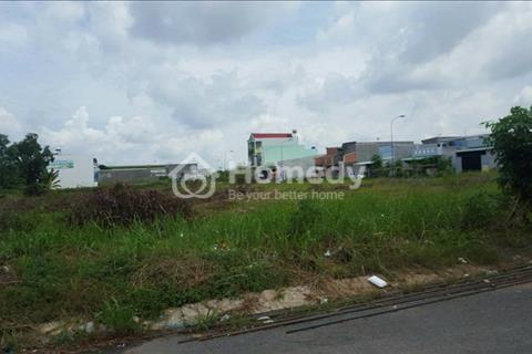 Đất vườn 1909m2, ngang bao la 38m, An Phú Tây, Bình Chánh