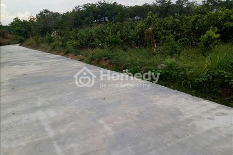 Bán 3 sào đất vườn Tiến Thành - Đồng Xoài - Bình Phước