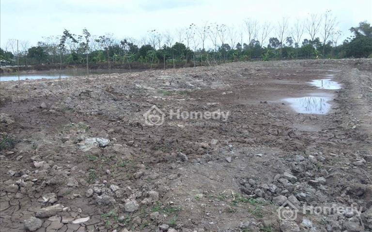 Bán trang trại chăn nuôi và trồng cây tại thành phố Hưng Yên