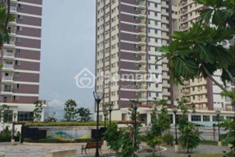 Cần bán căn hộ Penthouse chung cư Vision, Quận Bình Tân