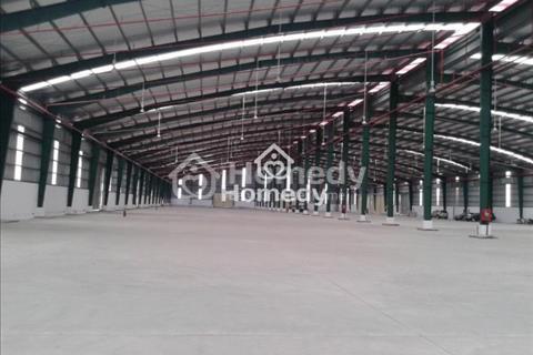 Cho thuê kho xưởng khu công nghiệp Tân Đô Tân Đức, Hải Sơn 3000m2, 6000m2, 12000m2, 50 nghìn/m2