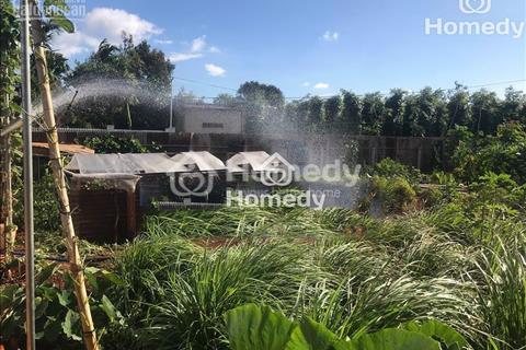 Bán đất vườn, 35m x 75m, hẻm Võ Văn Kiệt, gần Đài phát thanh