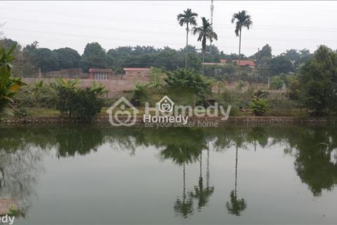 Cần bán gấp 2384m2 đất trang trại nhà vườn tại Lương Sơn, Hòa Bình giá rẻ 650 triệu