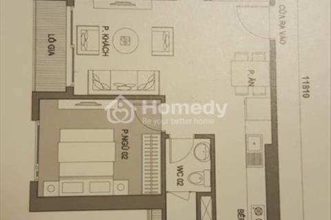 Bán chung cư cao cấp 2601 tòa C6 tổ hợp D' Capitale Vinhomes Trần Duy Hưng