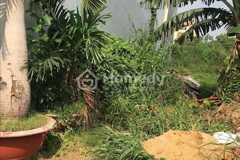 Gia đình tôi cần bán gấp 2 lô Võ Thị Hồi, sổ hồng riêng 540 triệu, gần Nguyễn Thị Thử