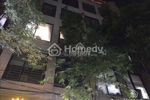 Chính chủ cho thuê căn hộ khép kín phố Trung Kính, Cầu Giấy (miễn trung gian)