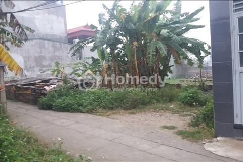Cần bán đất thổ cư 48m2 thôn Thượng Phúc, xã Tả Thanh Oai, Thanh Trì, Hà Nội 12,5 triệu/m2