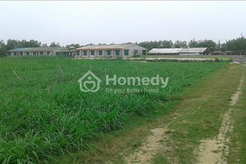 Cần bán trang trại có diện tích 10ha tại xã Hải Ninh, huyện Quảng Ninh, tỉnh Quảng Bình