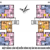 Nhanh tay sở hữu căn hộ chung cư NO-08 Giang Biên, Long Biên, Hà Nội