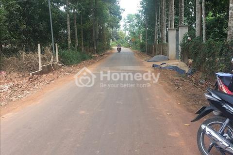 Bán đất nền mặt tiền huyện Trảng Bom, tỉnh Đồng Nai giá ưu đãi