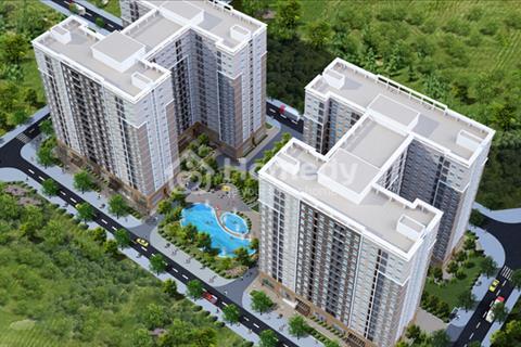 Cần 400 triệu được dọn vào ở ngay căn hộ 36m2 Ecohome 2, Bắc Từ Liêm, cách Phạm Văn Đồng 100m