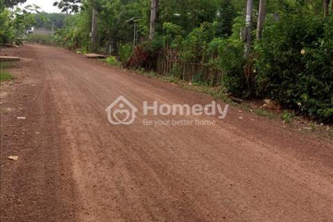 Bán 7000m2 đất cao su tại Đồng Phú, Bình Phước