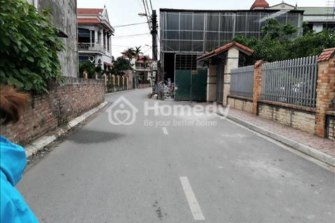 Bán đất 36m2 An Lạc, Trâu Quỳ, Gia Lâm, Hà Nội