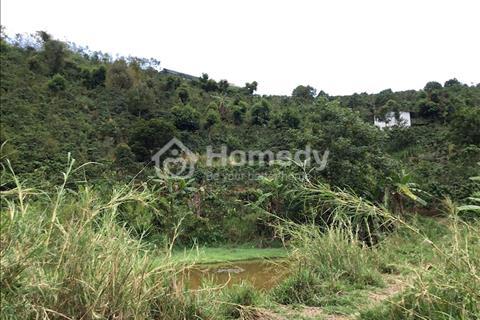 Đất nông nghiệp giá rẻ nhất thị trường thành phố Đà Lạt