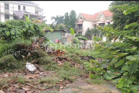 Cho thuê lô đất 2 mặt tiền đường Ngô Quang Huy, Thảo Điền, 810m2, 6000 USD/tháng