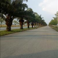 Ngân hàng thanh lý đất nền và hỗ trợ cho vay mua đất Bình Chánh, dân cư hiện hữu, gần ngã tư Bà Hom