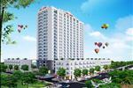 Khu nhà ở xã hội 379 Thanh Hóa nằm bên cạnh Sở Công Thương, sau toà nhà Viettel, là 1 trong những chung cư có địa điểm đắc địa nhất hiện nay tại trung tâm thành phố Thanh Hóa. Vị trí tọa lạc của dự án được bao bọc bởi các khu dân cư hiện hữu cùng nhiều tuyến đường trọng điểm của tỉnh.