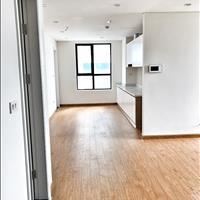 Cho thuê Officetel chính chủ, chung cư cao cấp Hong Kong Tower