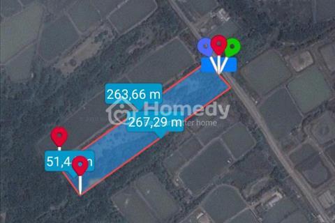 Chính chủ bán đất mặt tiền Nguyễn Văn Tạo, Cần Giuộc 12,5 tỷ, 10.892 m2