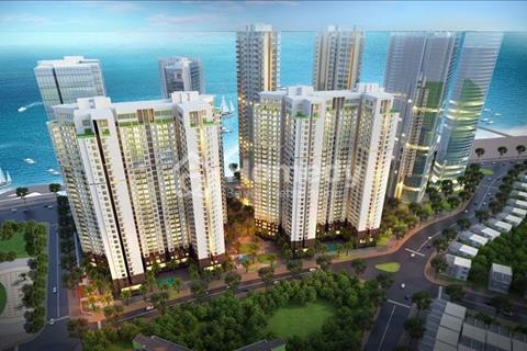 Shophouse căn hộ thương mại, 1,3 tỷ, 3 mặt tiền, Võ Văn Kiệt, đường 61 và đường Gia Phú