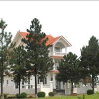 Sàn Hải Phát mở bán biệt thự nghỉ dưỡng The Phoenix Garden, chiết khấu 200 triệu/lô, lãi suất 0%
