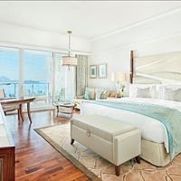 Condotel TMS Luxury Hotel Đà Nẵng view trực diện biển Mỹ Khê, cam kết lợi nhuận 10%/năm