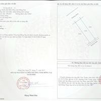 Bán đất nền chính chủ, dự án Long Hưng Đồng Nai, 100m2, 1,35 tỷ
