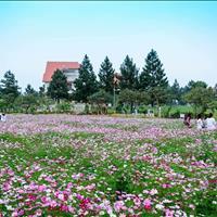 Độc quyền phân phối biệt thự sinh thái The Phoenix Garden - KĐT đáng sống nhất phía Tây Hà Nội