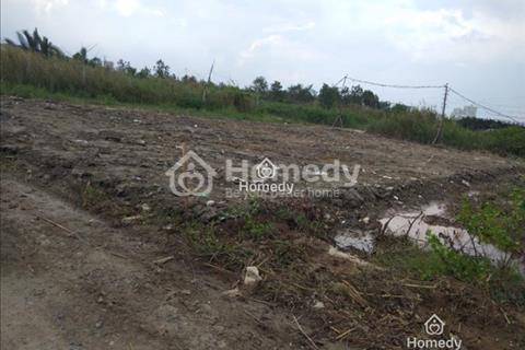 Cần bán gấp lô đất thổ vườn 2 mặt tiền, đường Phạm Hữu Lầu, Phú Mỹ Hưng