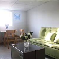 Căn hộ mini full nội thất mới đường Nguyễn Thị Thập, Nguyễn Văn Linh, Phú Mỹ Hưng, Big C quận 7