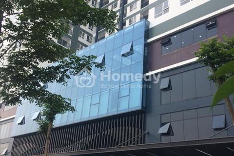 Cho thuê mặt bằng kinh doanh, dự án Riverside Garden 349 Vũ Tông Phan, Thanh Xuân