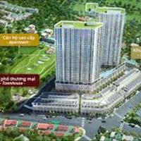 Giỏ hàng 50 căn 2 phòng ngủ dự án The Pegasuite view tuyệt đẹp và đẳng cấp nhất quận 8