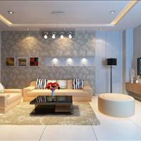 Cần bán gấp căn hộ 3 phòng ngủ chung cư Topaz Center, Trịnh Đình Thảo, quận Tân Phú