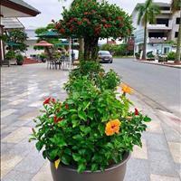 Bán đất nền, nhà liền kề khu đô thị Quang Minh, Thủy Nguyên