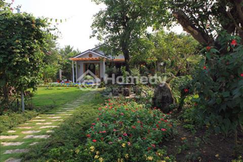 Bán gấp 1450m2 nhà vườn nằm ngay chợ Hưng Long, 3,29 tỷ