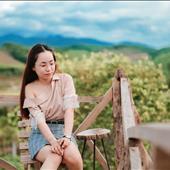 Lê Thị Thúy Hằng