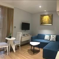 Cho thuê căn hộ mini 1 phòng ngủ cao cấp 40m2, Bình Thạnh