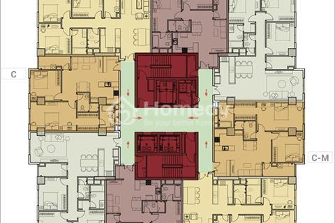 Remax Plaza quận 6 chào bán 40 căn hộ view đẹp đợt cuối, thanh toán nhanh chiết khấu khủng 5%