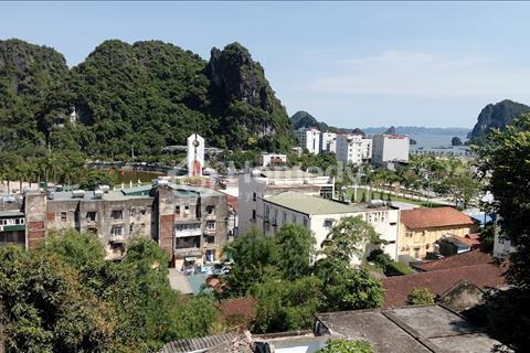 Cần bán đất thổ cư phường Bạch Đằng, thành phố Hạ Long và 2000m2 đất trồng cây lâu năm