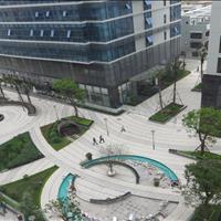 Cần bán gấp hoặc cho thuê căn hộ Tràng An đầy đủ nội thất, sổ hồng chính chủ, giá bán 3.2 tỷ