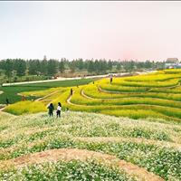 The Phoenix Garden - Đà Lạt Thu nhỏ giữ lòng Hà Nội, giá chỉ 17 triệu/m2