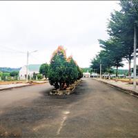 Đất biệt thự nghỉ dưỡng rẻ nhất Bảo Lộc, Lâm Đồng, tặng ngay 5 chỉ vàng khi giao dịch
