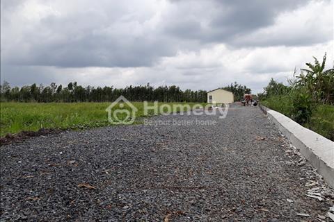 Bán gấp 1000m2 đất nền ở Bến Lức - Long An, giá 1,5 triệu/m2