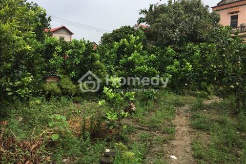 Cần bán lô đất thổ cư chính chủ tại ngoại thành Hà Nội