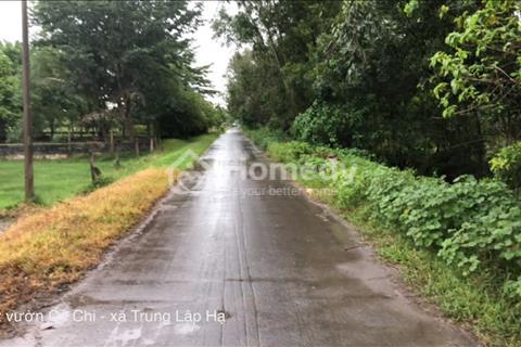 Chính chủ cần bán đất vườn đẹp, diện tích lớn - xã Trung Lập Hạ giá rẻ