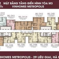 Chính chủ cần bán chung cấp Vinhomes Metropolis, căn 3509-M3, diện tích 120.57m2 giá 95,38 triệu/m2