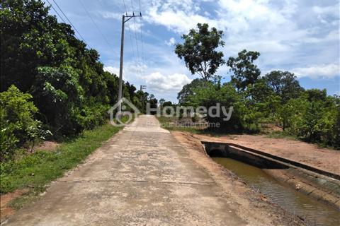 Đất vườn xoài giá rẻ Hương lộ 39, Suối Cát, Cam Lâm diện tích 4146m2