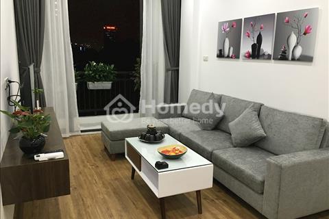 Căn hộ dịch vụ, loại 1, 2 phòng ngủ, đủ đồ, hiện đại, giá cực tốt, ở Đào Tấn, gần Lotte Center