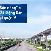 Nguyễn Thị Mỹ Trinh